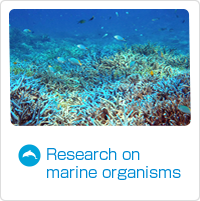 Research on marine organisms