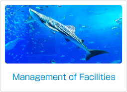 Management of Facilities